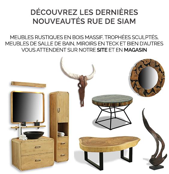 Découvrez les dernières nouveautés Rue de Siam : Meubles rustiques en bois massif, trophées sculptés, meubles de salle de bain, miroirs en teck et bien d'autres vous attendent